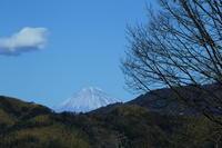 藤枝蓮華寺池公園の今日の富士山 - 蓮華寺池の隣5