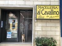 プーリアに来たら馬肉ソーセージ - 情熱的イタリア生活
