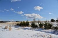 冬のバラキ湖①バラキ高原 - 光画日記