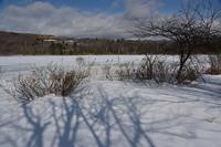 冬のバラキ湖②バラキ高原 - 光画日記