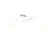 《白い渓に釣る。・・・闘争無限》 - 『ヤマセミの谿から・・・ある谷の記憶と追想』