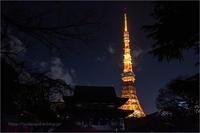 増上寺と東京タワー - りゅう太のあしあと