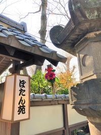 上野東照宮ぼたん苑2019① - まほろば日記