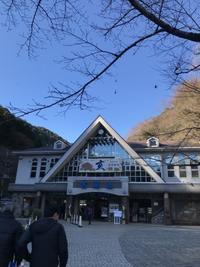 1月9日高尾山初詣登山。 - 白黒きんぎょの3狆ごよみ