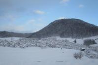 雪の山辺 - 長女Yのつれづれ記