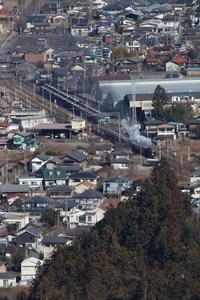 貨物列車と蒸気機関車- 2019年元日・秩父 - - ねこの撮った汽車