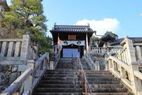 【楊谷寺】part 1 年明け関西帰省 - 7 - - うろ子とカメラ。