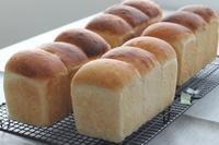 初笑い?そんなパン作りもいいものです♪ - launa パンとお菓子と日々のこと
