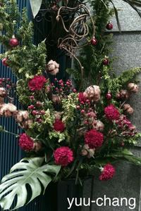 倉敷えびす通り商店街街角の花(銀残し) - 下手糞でも楽しめりゃいいじゃんPHOTO BLOG