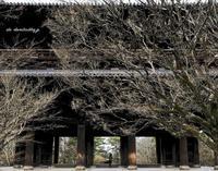 南禅寺 - A  B  C