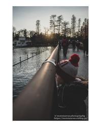 池を眺めて - ♉ mototaurus photography