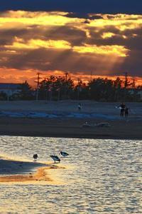 九十九里海岸夕景2019-01-21更新 - 夕陽に魅せられて・・・