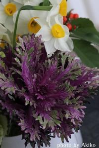 本日のお花と福袋♪ - Blanc de Blancs