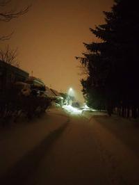 1月10日今日の写真 - ainosatoブログ02