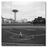 #2590野球場 - at the port