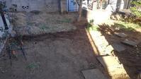 今年初の草取り - うちの庭の備忘録 green's garden