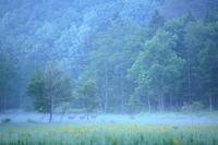 鹿鳴 - 拙者の写真修行小屋