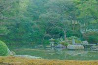 方丈庭園。 - Yuruyuru Photograph