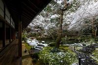 雪の京都額縁庭園の雪の華(蓮華寺) - 花景色-K.W.C. PhotoBlog
