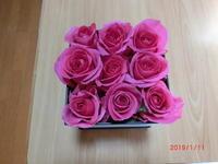 バラがいっぱい - 香りの部屋