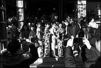 浅草散歩- 80 - Camellia-shige Gallery 2