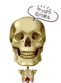 頭蓋骨事件が石川県の高校にも上陸!? - 酎ハイとわたし