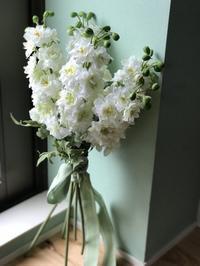 今年もよろしくお願いします - LaLa Bouquet