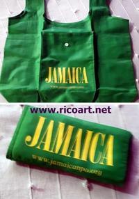 スキャンダルバッグのゆくえ - ジャマイカブログ Ricoのスケッチ・ダイアリ