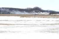 雪原に残る白煙- 釧網線 - - ねこの撮った汽車
