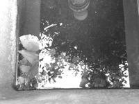 心模様 - hibariの巣