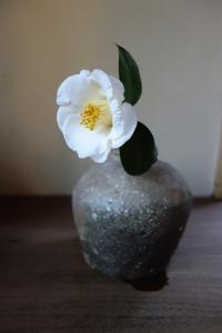 すがすがしい新春に - g's style day by day ー京都嵐山から、季節を楽しむ日々をお届けしますー