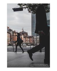 冬曇りの悩み - ♉ mototaurus photography
