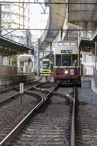 Tokyo Sakura Tram - jinsnap_2(weblog on a snap shot)