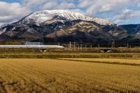 雪の伊吹山とドクターイエロー - toshi の ならはまほろば