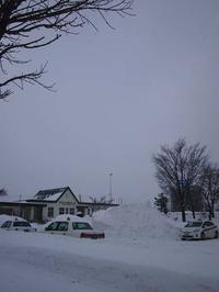 1月12日今日の写真 - ainosatoブログ02
