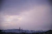 飛行機雲 - たなぼた
