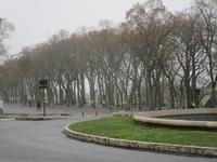 1月12日ジレ・ジョーヌが集まってくる - フランス Bons vivants des marais