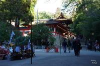 天理市古神符焼納祭(こしんぷしょうのうさい・大とんど) - ぶらり記録:2 奈良・大阪・・・