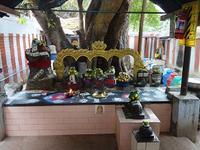 プラサドを3回もらった日@マドゥライ - kimcafeのB級グルメ旅