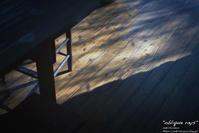 """oblique rays"" - ~まきち写真工房~"