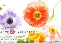 トランクマルシェvol2タイムスケジュール決定。『カメラが恋する花とスタイリング』出張レッスンします - 東京女子フォトレッスンサロン『ラ・フォト自由が丘』-写真とフォントとデザインと現像と-