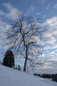 雪国へ1 - 季節のおくりもの