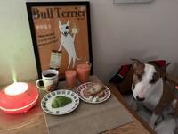 アロマ加湿器と朝食 - ミニチュアブルテリア ダージと一緒3