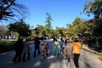 出雲大社 1/13 - じじ & ばば の Photo blog
