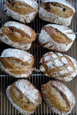 スペルト小麦のカンパーニュ - KuriSalo 天然酵母ちいさなパン教室と日々の暮らしの事