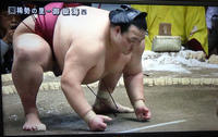 大相撲初場所 稀勢の里、黒星スタート - 東金、折々の風景
