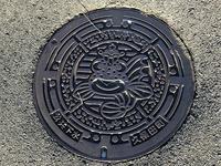 佐賀インターナショナルバルーンフェスタ2018(佐賀県 嘉瀬川河川敷)・2 - 今日は何処まで