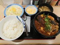 1/14  麻婆鍋膳生野菜セットライス大盛無料¥650 + 追いチーズ¥150 @松屋 - 無駄遣いな日々