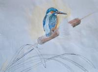 #野鳥スケッチ #ネイチャー・ジャーナル 『カワセミ』 - スケッチ感察ノート (Nature journal)