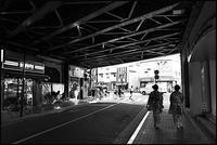 浅草散歩- 83 - Camellia-shige Gallery 2